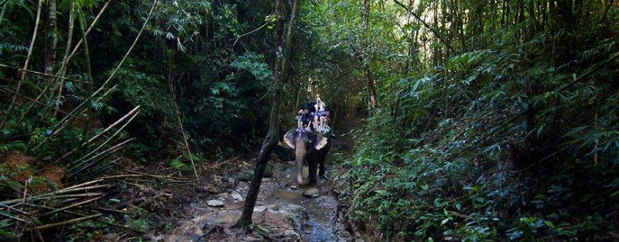 Самые незабываемые экскурсии на Пхукете